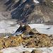 Tiefblick um Ghiacciaio del Sabbione. Beim Abstieg werden wir links von der markanten Felsformation gehen.