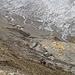 Auf dem Weg zum Griesspass nach verlassen des Gletschers. Auch hier kann man sich kaum über einen Mangel an Steinen beklagen :-)