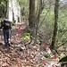 Da Faù si deve risalire il tratto ripristinato fino al Bivio sotto i Monti di Carate.<br />A dx un sentiero promettente verso Careno, in piano e segnalato, ci ingolosisce...