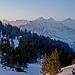 Viertausender vom Finsteraarhorn bis zur Jungfrau