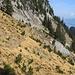 ... auf schmalen Pfädlein im steilen Hang ...