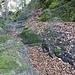 In den Sandstein gehauene Stufen beim Abstieg