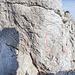 Nach ein wenig Kletterei folgt die zweite Abseileinrichtung. Die Wand abzuklettern soll im 6. Franzosengrad möglich sein... Also lieber abseilen, ein 50 m-Seil reicht in jedem Fall