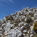 Blick in die Aufstiegsrichtung des Westgipfels (bereits nach der Scharte Portixol und der Verschneidung mittig in der Wand