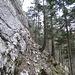 Nach Möglichkeit steigt man schon früher auf den Grat. Ich hingegen quere in einem Irrglauben unterhalb des Grates entlang den Felsen.