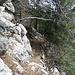 Der Weg ist nicht immer so deutlich sichtbar wie hier. Ab und zu erkennt man an den Felsen alte, grau übermalte Markierungen.