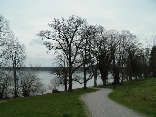 attraktiver Spazierweg Richtung Seeshaupt