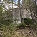 versteckte Bunker im Wald
