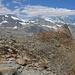 Im Vordergrund die Spähnhörner, dahinter von links Strahlhorn, Rimpfischhorn, Allalinhorn, Alphubel, Täschhorn, Dom, Lenzspitze