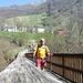 Erbonne : Ponte di legno sul Breggia