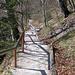 Auf Stufen zügig abwärts