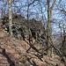 Zvon (Francká hora) - Blick zum Gipfelfelsen. Im Hintergrund lugt die Milešovka hervor.