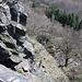 Zvon (Francká hora) - Tiefblick an den südseitigen Felsabbrüchen.