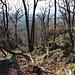 Am Malá Francka - Hier ein Stück westlich des Gipfels, wo das Gelände relativ steil abfällt.