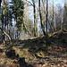 """Unterwegs am Kostomlatský vrch - Praktisch weglos geht's über den nordwestlichen/westlichen Berghang in Richtung Gipfel. Die """"beste"""" Route müssen wir dabei selbst suchen."""