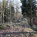 """Kostomlatský vrch - Blick über den Gipfel. Gleich steigen wir kurz ostseitig/südseitig ab (sozusagen kurz rechts und dann """"nach hinten"""") und erreichen einen Weg, der uns in wenigen Minuten zur Straße Kostomlaty - Milešov führt."""