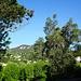 Lodève - Blick vom Haus auf die gegenüberliegenden Höhen