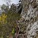 Teils schmal und ohne Schutz, teils mit Eisengeländer befestigt führt es zum Bärenloch hoch.