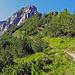 Rückblick in Richtung Gafleisattel und Alpspitz