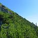 Hier hat es viele Bergkiefer Sträucher die ab und zu etwas Schatten gaben, denn es war sehr heiss an diesem Tag.