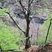 Il bacino di Val Roggiasca occhieggia fra le foglie novelle dei faggi.