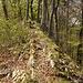 Der Weg zur Ruine Königstein entschädigt für vieles.