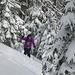 Tanja im winterlichen Wald.