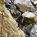 La calata al rio della Val Piana