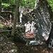 Resti dei tempi dei boscaioli
