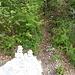 bei diesem Steinmann geht es auf schmalem Pfad steil aufwärts