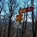 """Il """"nostro"""" è il 355 ed è anche parte del (route) 66, Lugano Bike"""
