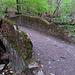 Eine der vielen Brücken im Elefantentobel.