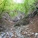 im weiteren Abstieg werden wilde Tobel durchquert ...