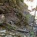 Qui la prima adrenalina, ed il primo cerca-sentiero. In basso si vede il Riale di Mercori, il tronco chiaro dove si passa il riale, poi ... tutto franato