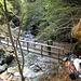 Ponte sul Riale di Drosina sul sentiero dopo Piansgeira