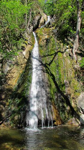 Ein Bild, das Baum, draußen, Natur, Wasser enthält.  Automatisch generierte Beschreibung