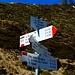 non so se puntare diretto alla cima. Le tempistiche sono super ampie, il passo della Margina si raggiunge in 10' (senza fretta) e la cima della Loccia di Peve al massimo massimo in 30'....