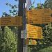 Oberbuechholz
