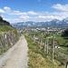 tolle Panoramastrasse oberhalb von Heerbrugg