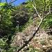 Sul sentiero da Ca dul Gobb a Il Culet