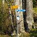 Einstieg vom Alpinwanderweg zu Bützi- und Stockflue