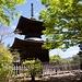 Die kleine zweistöckige Pagode im Tempelkomplex von Jōjakkō-ji / 常寂光寺.