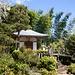 Kirschblüten und Bambus im wunderschönen Tempelkomplex von Jōjakkō-ji / 常寂光寺.
