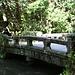 Steinbrücke im Garten des Tempels Hōnen-in / 法然院.
