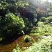 klares Wasser ist hier aufgrund des metallischen Bodens häufig braun