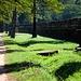 Straße auf dem Gelände von Angkor Wat.