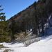 Auch im Jura Gelände war es wieder weiss. Nach dem Aufstieg zum Plateau vom Weissenstein