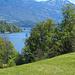 Über das Halsihorn gezoomt zum Ufer beim Meggerhorn
