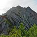 es geht alles dem Grat nach bis zum Anfang der Felsen, bis dort wo die Bergkiefer Stauden aufhöhren