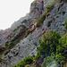 Hier habe ich gedacht, ich glaube ich sehe nicht recht ein Einradfahrer mit dem Rad auf der Schulter kommt den Berg herunter. Es war der beste Alpine Einradfahrer der Alpen, Markus Büchel, klick sein Video an.<br />[https://www.youtube.com/watch?v=yBd2GVyj1qA]